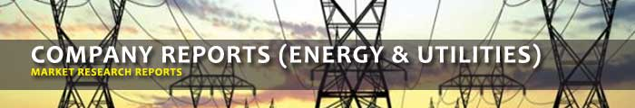 Company Market Research Reports (Energy & Utilities)