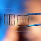 Biochips (Microarrays/Lab-on-Chip) Global Market  – Forecast To 2021