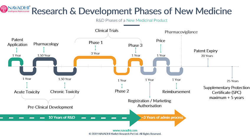 Research and Development Phases for New Medicine