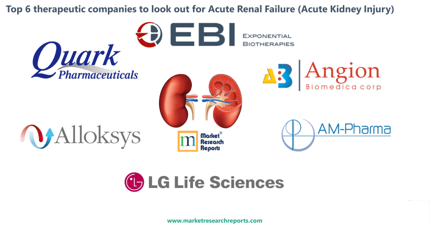 Top 6 therapeutic companies to look out for Acute Renal Failure (Acute Kidney Injury)