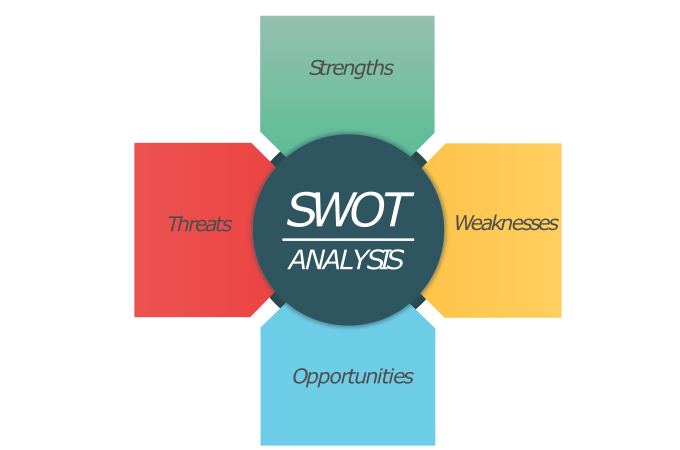 SWOT Analysis Reports