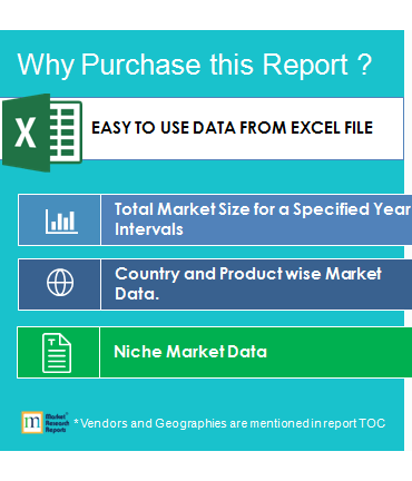Why to Buy This Market Research Report