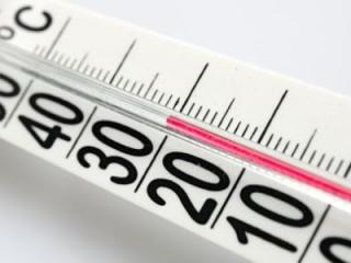 World Thermometer Market