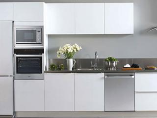 World Domestic Appliance Market