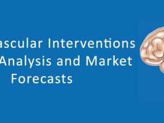 Global Neurovascular Interventions Market Future Outlook