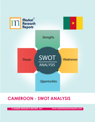 Cameroon SWOT Analysis Market Research Report