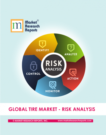 Global Tire Market Risk Analysis