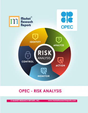 OPEC RISK Analysis Market Research Report