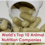 World's Top 10 Animal Nutrition Companies