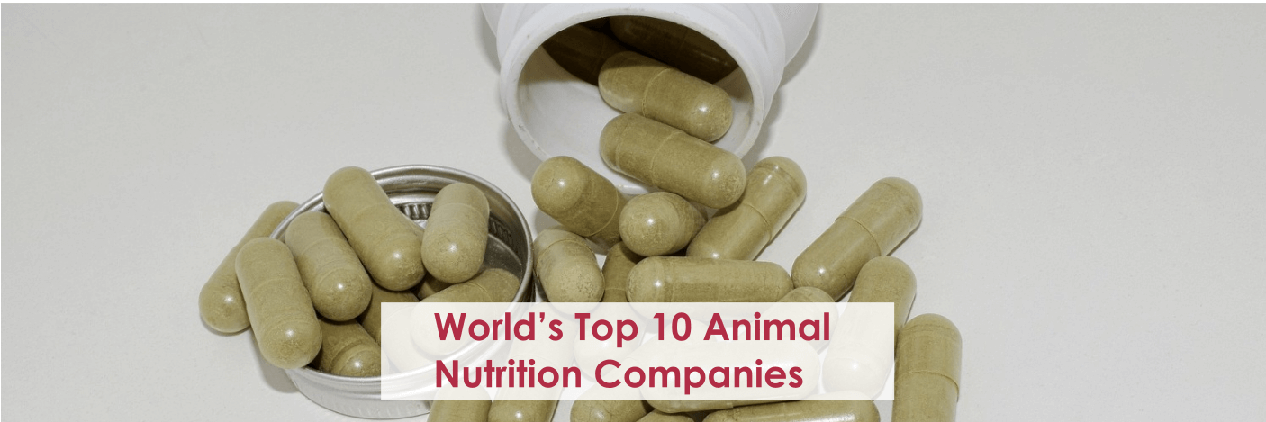 World's Top 10 Animal Nutrition Companies | Market Research Reports